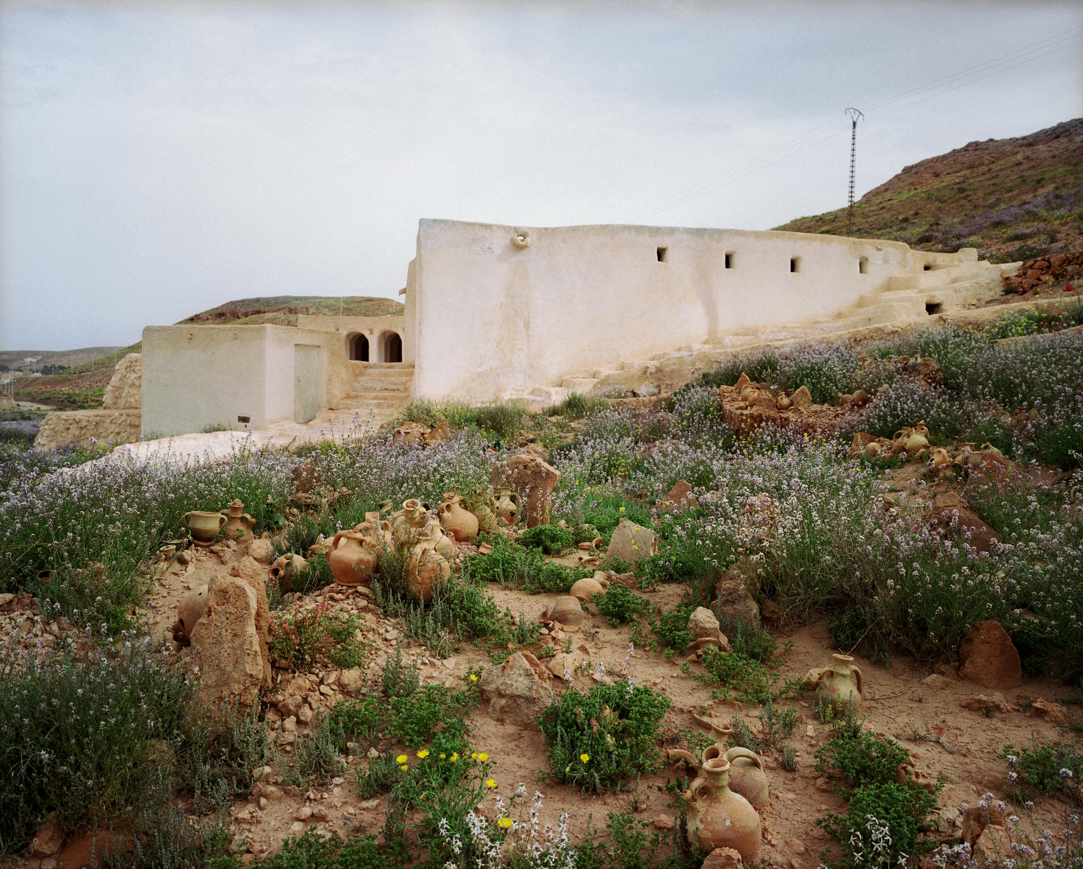Ghardaia6