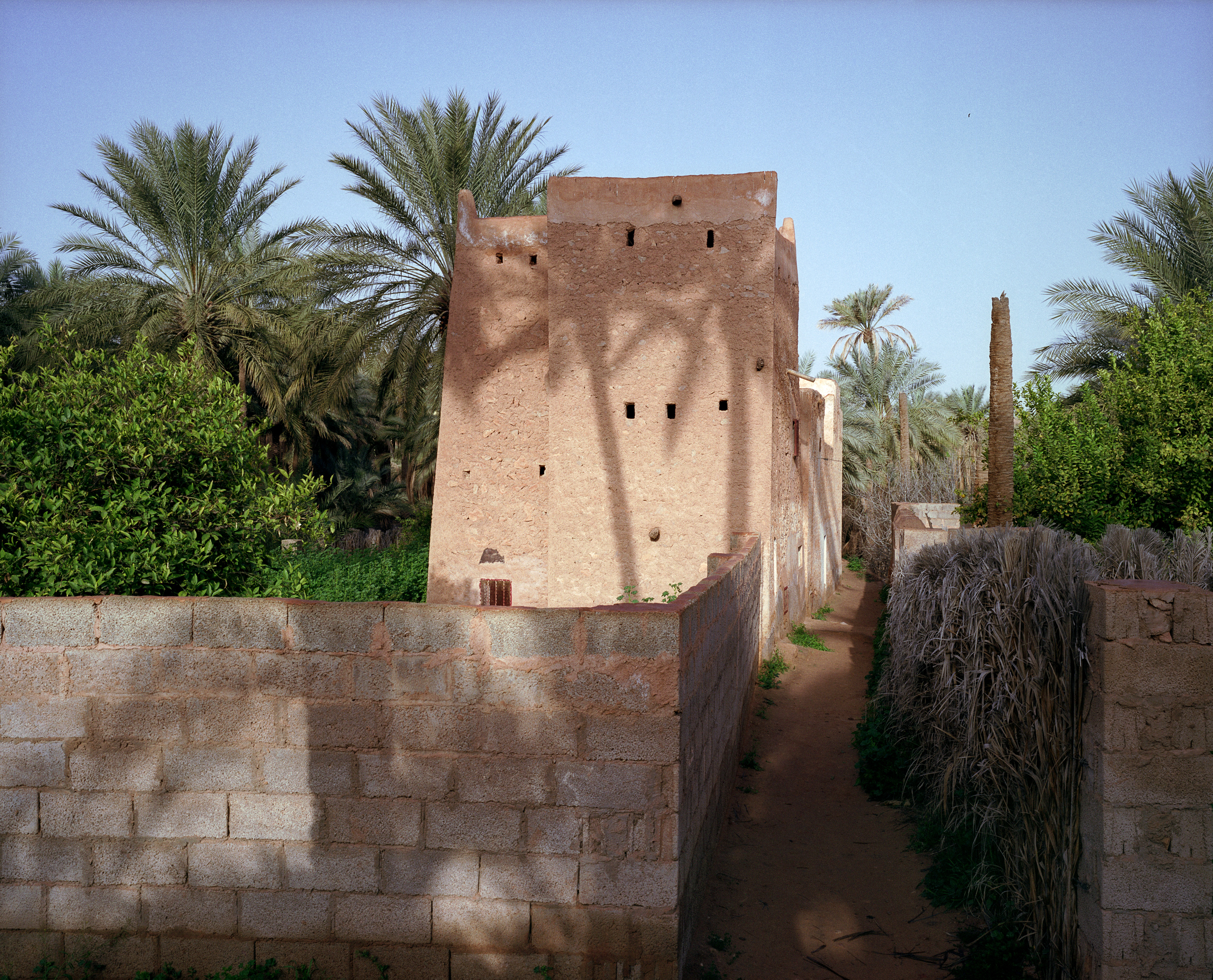 Ghardaia9